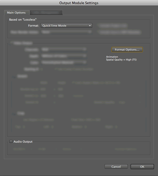 AE Output Module Settings