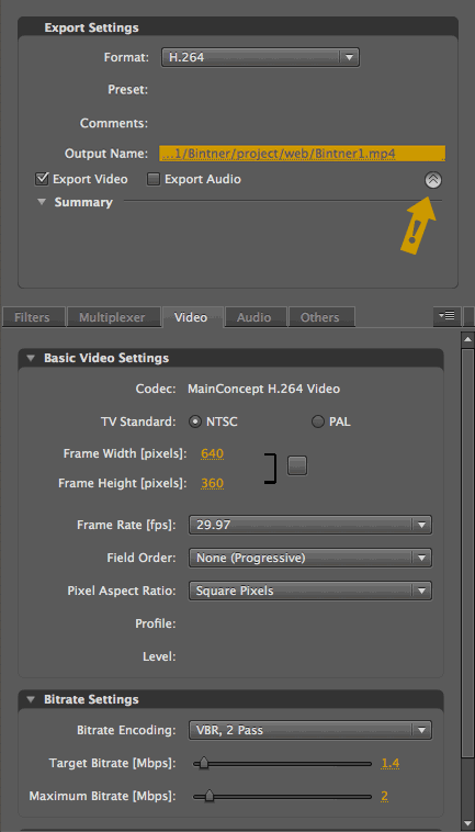 Adobe Media Encoder Export Options